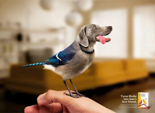100 anuncios publicitarios creativos