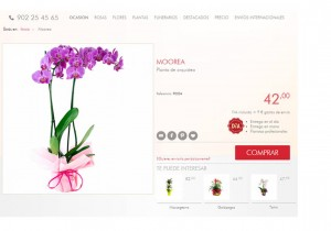 quiero crear mi tienda online