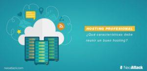 ¿Qué características debe reunir un buen hosting profesional?