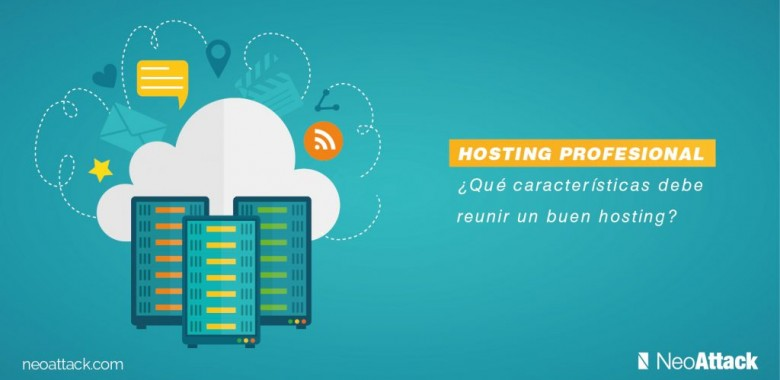 caracteristicas hosting profesional