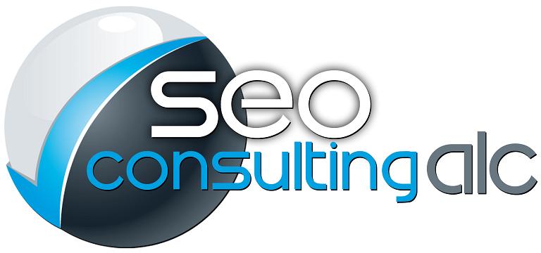 agencia seo consulting